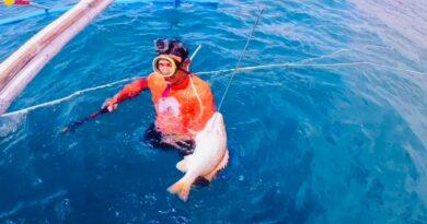 Die Philippinen im Video - Speerfischen mit Kompressor