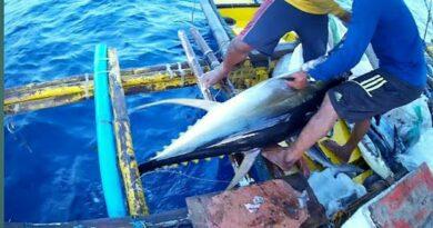 Die Philippinen im Video - Traditioneller Thunfisch-Fang in den Philippinen