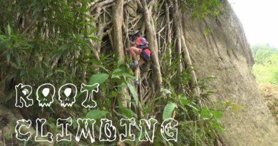 Die Philippinen im Video - Baumwurzelklettern und Abseilen im Danao Abenteuerpark