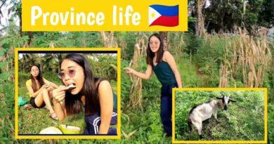 Die Philippinen im Video - Provinzleben in Mindanao