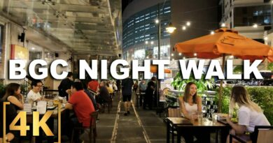 Die Philippinen im Video - BGC fast wieder normal - Nachtspaziergang