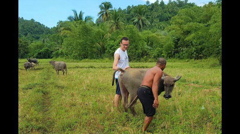 Die Philippinen im Video - Schöne Natur in Taft