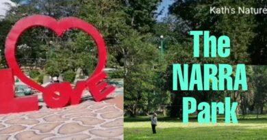 Die Philippinen im Video - Der Narra Park