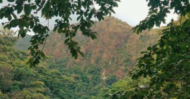 Die Philippinen im Video - Am Fluß Catingas auf Sibuyan