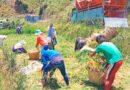 Die Philippinen im Video - Einfaches Leben in Benguet