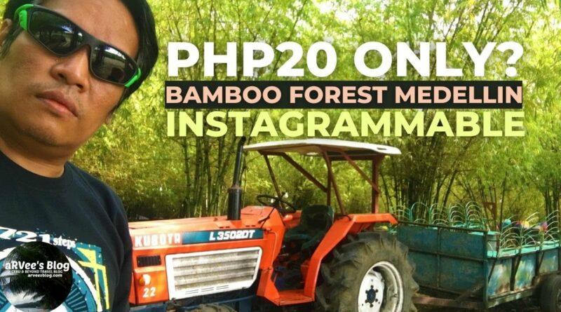 Die Philippinen im Video - Im Bambuswald von Medellin Cebu