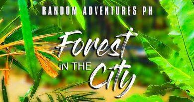 Die Philippinen im Video - Wald in der Stadt Bacolod