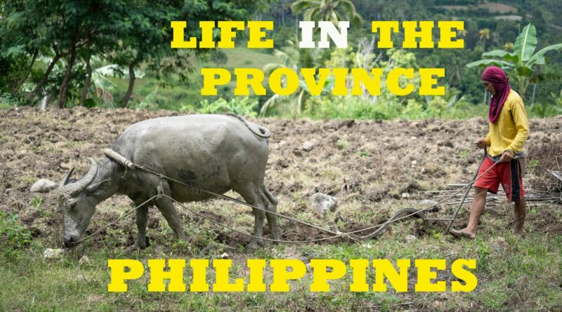 Die Philippinen im Video - Philippinisches Landleben