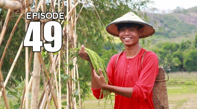 Die Philippinen im Video - Anpflanzen von Stangenbohnen und kochen von Pinakbet | Vom Saatgut auf den Tisch